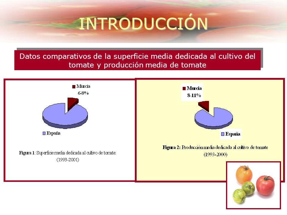 INTRODUCCIÓN España y Europa Consumo preferentemente en fresco En España su consumo está en 31.8 Kg/habitante/año Estados Unidos (25.5 Kg/habitante/añ