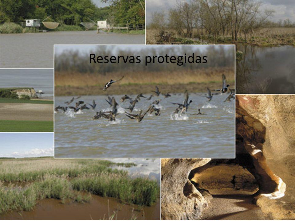 Reservas protegidas