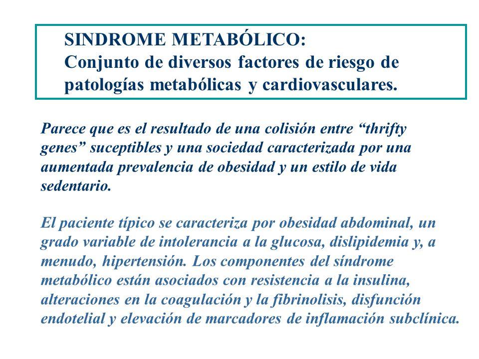 SINDROME METABÓLICO: Un conjunto de múltiples factores interrelacionados que aumentan el RIESGO CARDIOVASCULAR. SINDROME METABÓLICO: Conjunto de diver