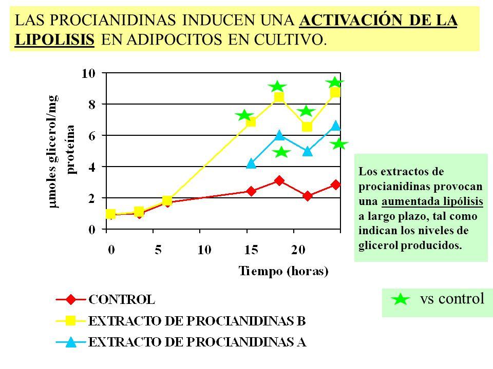 vs control Los extractos de procianidinas provocan una aumentada lipólisis a largo plazo, tal como indican los niveles de glicerol producidos. LAS PRO