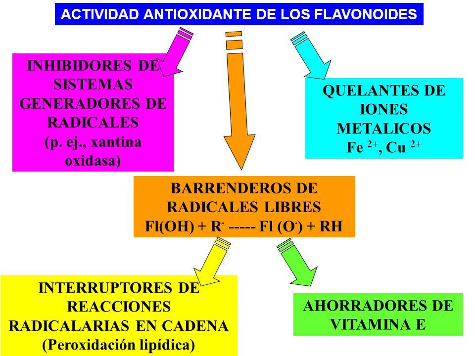 INHIBIDORES DE SISTEMAS GENERADORES DE RADICALES (p. ej., xantina oxidasa) QUELANTES DE IONES METALICOS Fe 2+, Cu 2+ BARRENDEROS DE RADICALES LIBRES F