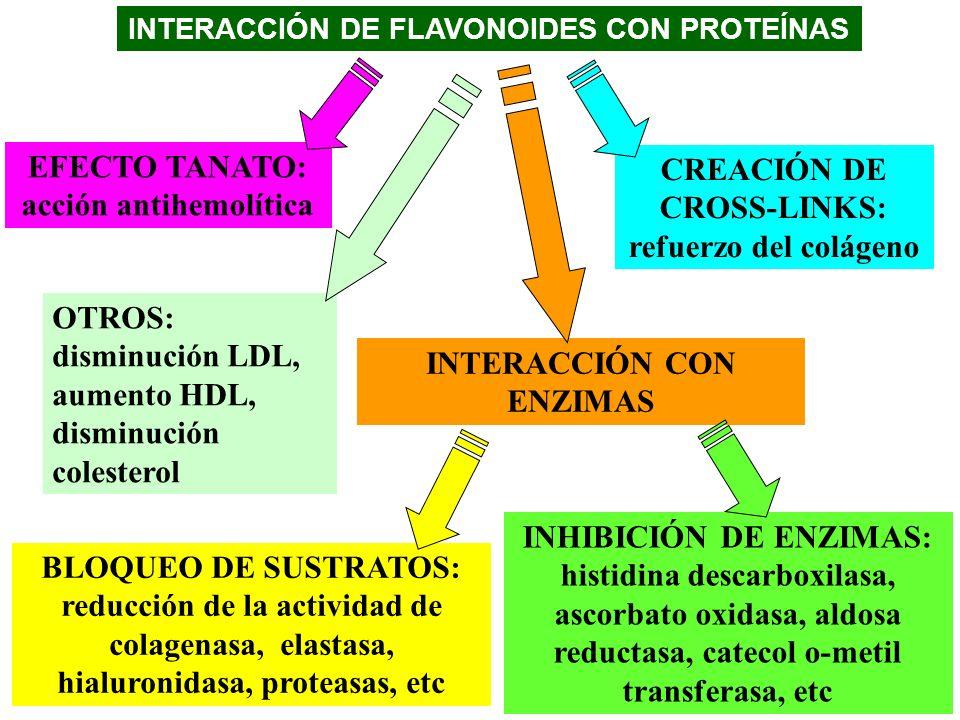 EFECTO TANATO: acción antihemolítica CREACIÓN DE CROSS-LINKS: refuerzo del colágeno INTERACCIÓN CON ENZIMAS INHIBICIÓN DE ENZIMAS: histidina descarbox