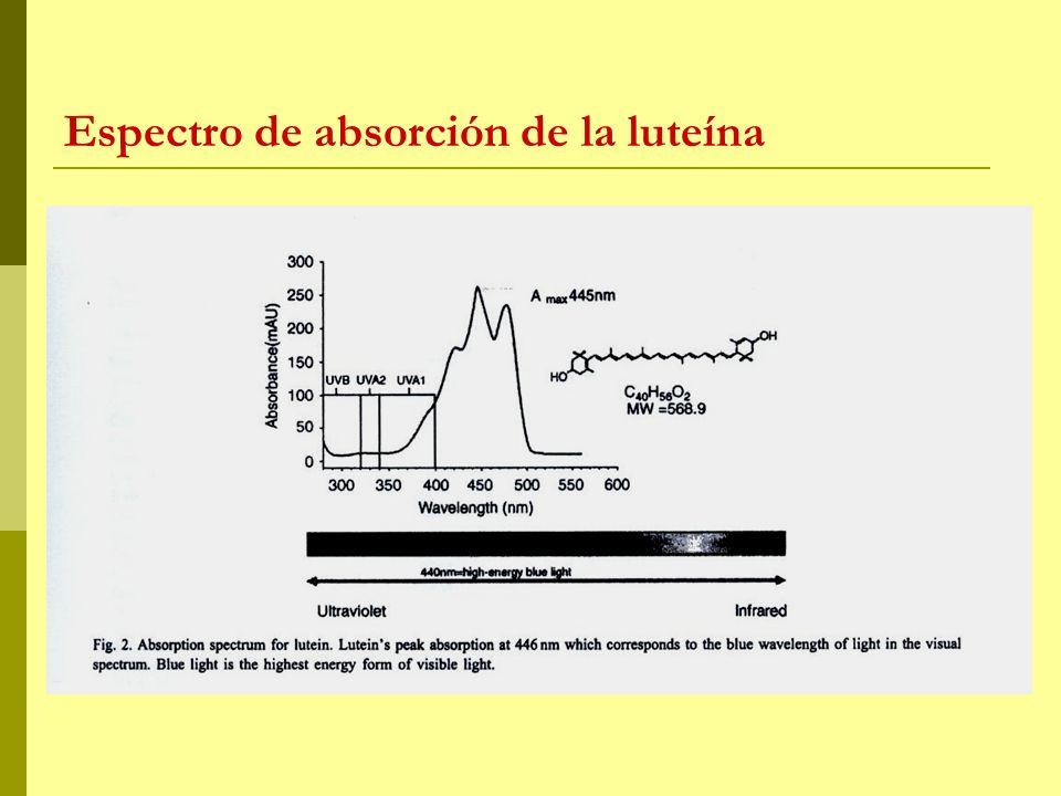 Espectro de absorción de la luteína