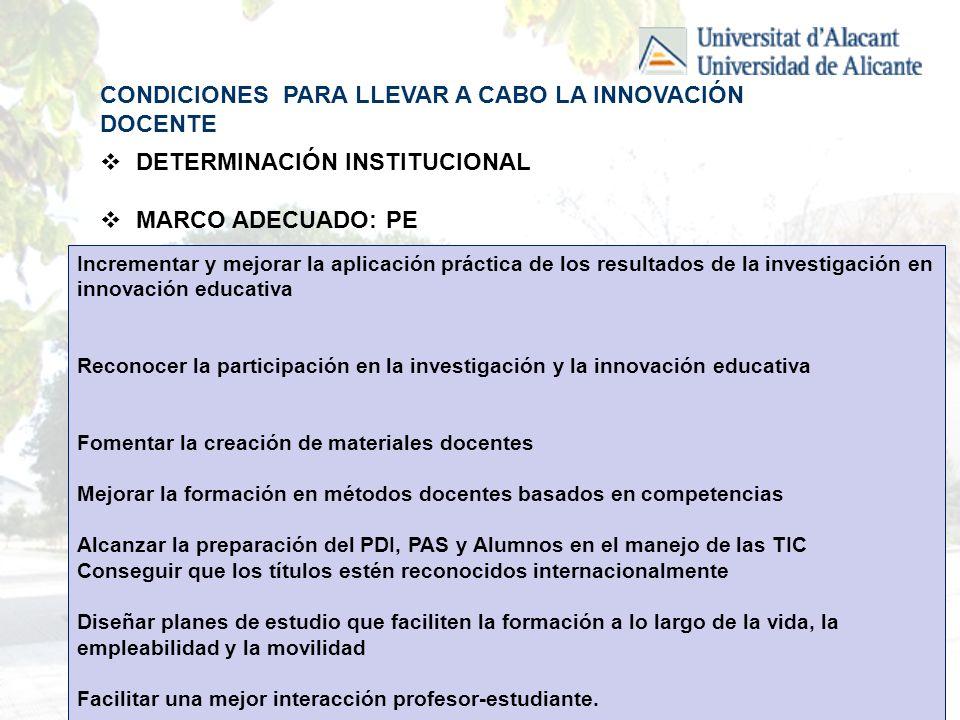 LINEAS DE TRABAJO ADECUADAS: PROGRAMAS E INICATIVAS ASESORIA PEDAGÓGICA/TÉCNICA.