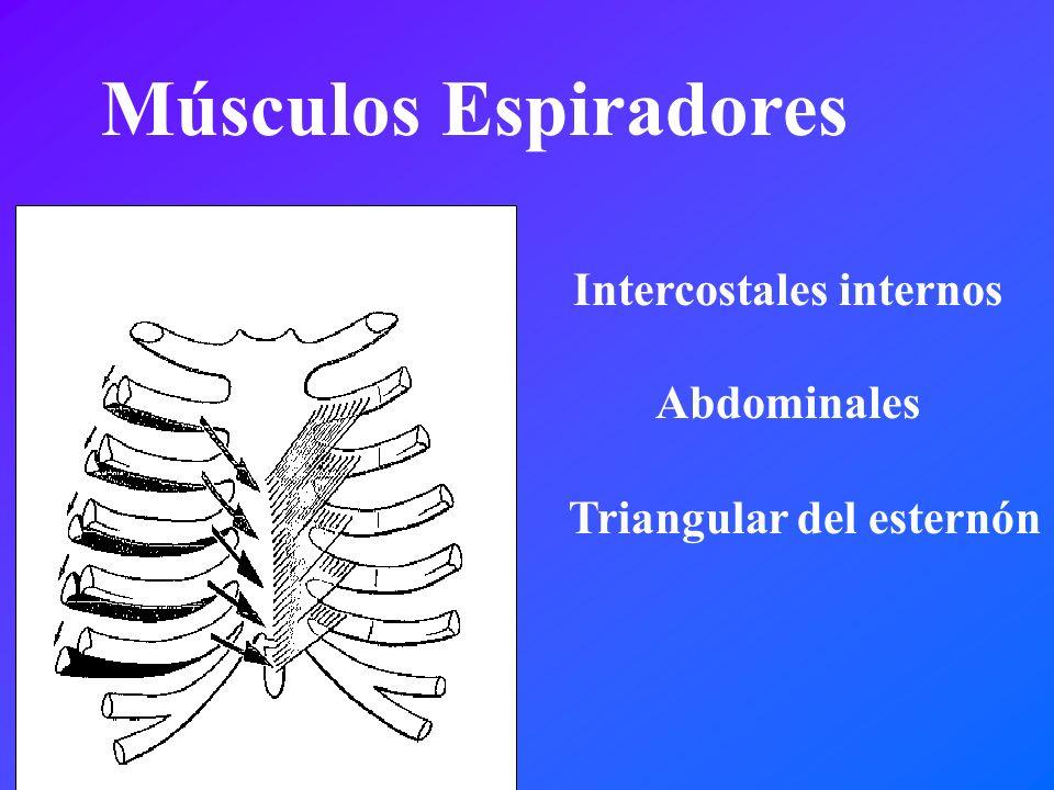 Triangular del esternón Músculos Espiradores Intercostales internos Abdominales