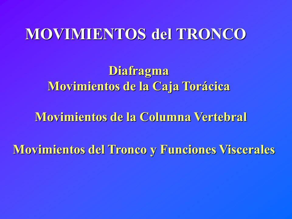 MOVIMIENTOS del TRONCO Movimientos de la Columna Vertebral Movimientos del Tronco y Funciones Viscerales Diafragma Movimientos de la Caja Torácica