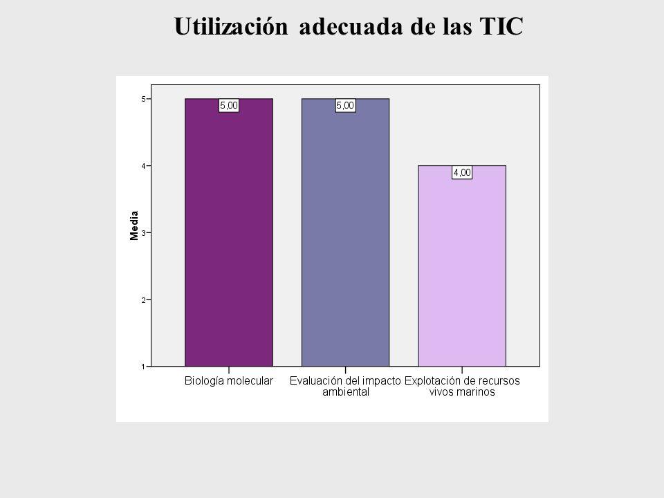 Utilización adecuada de las TIC
