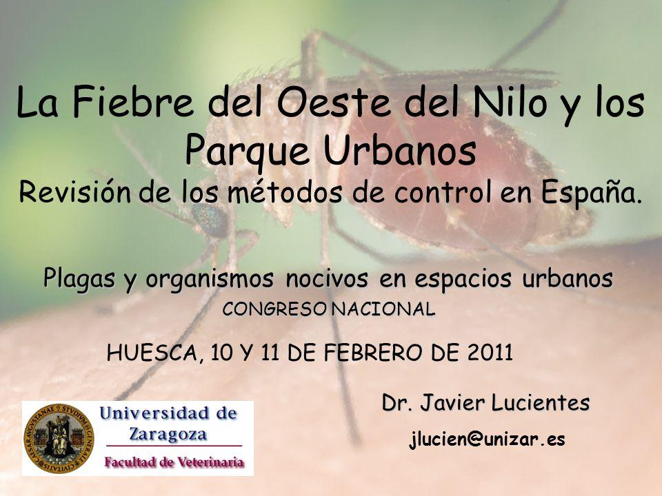 La Fiebre del Oeste del Nilo y los Parque Urbanos Revisión de los métodos de control en España. Plagas y organismos nocivos en espacios urbanos CONGRE