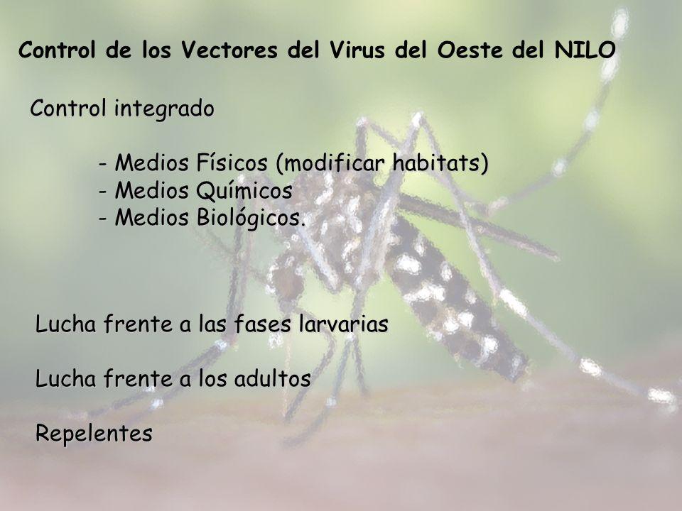 Control de los Vectores del Virus del Oeste del NILO Control integrado - Medios Físicos (modificar habitats) - Medios Químicos - Medios Biológicos. Lu