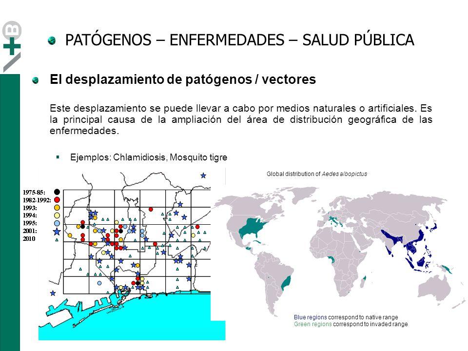 - Globalización: movimientos..