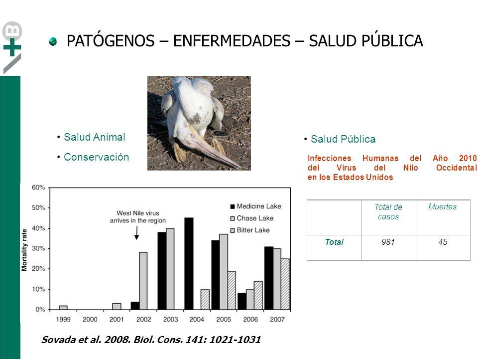 PATÓGENOS – ENFERMEDADES – SALUD PÚBLICA Hochachka & Dhondt 2000 PNAS Salud Animal Conservación