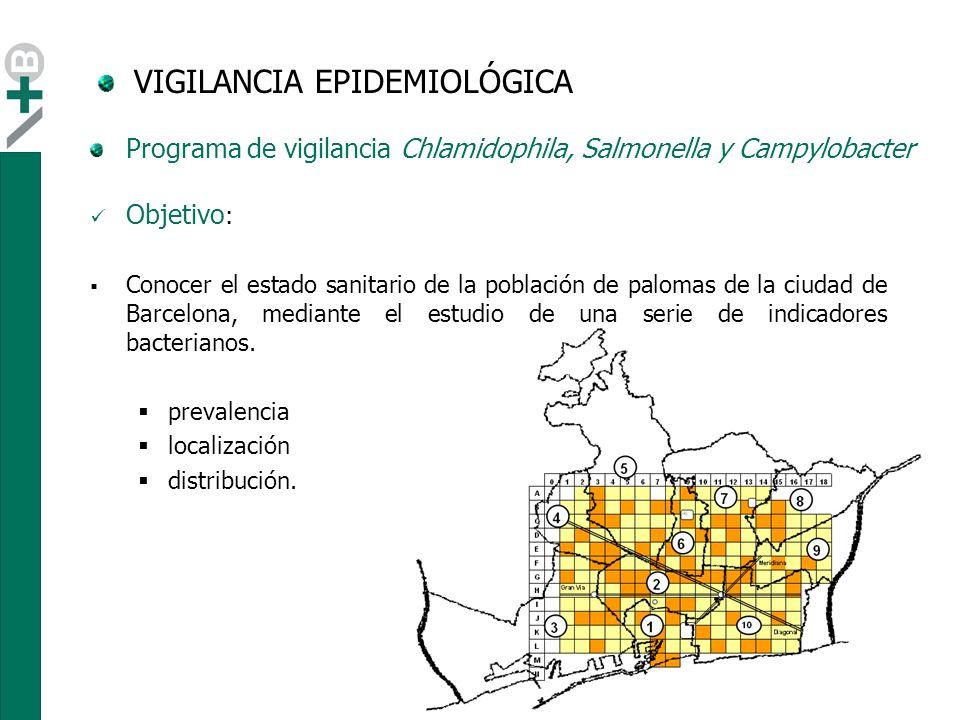 IndicadorPrevalencia Campylobacter jejuni27.5 % Salmonella sp.3.2 % Chlamidophila psittaci1.4 % VIGILANCIA EPIDEMIOLÓGICA Resultados Programa de vigilancia Chlamidophila, Salmonella y Campylobacter