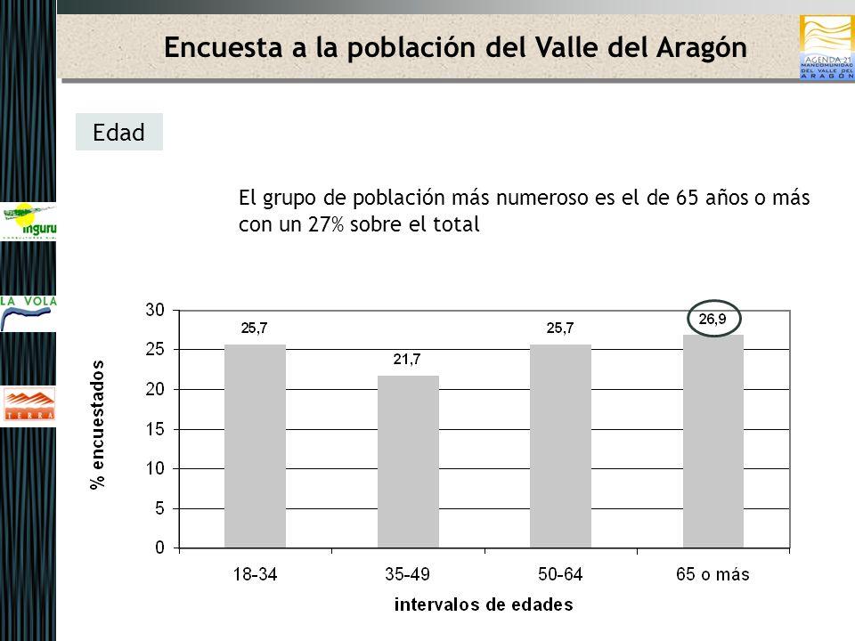 Encuesta a la población del Valle del Aragón Edad El grupo de población más numeroso es el de 65 años o más con un 27% sobre el total