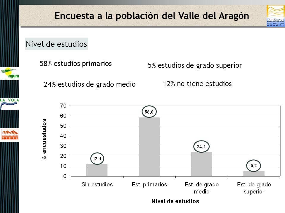 Encuesta a la población del Valle del Aragón Ocupación 45% trabaja 19% labores del hogar 27% jubilada 6% parados 2% estudia