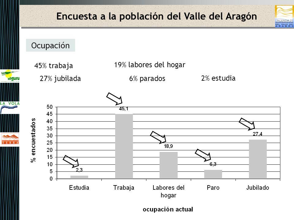 Actuaciones prioritarias a impulsar desde el Ayuntamiento ASPECTOS ECONOMICOS Encuesta a la población del Valle del Aragón Principales resultados de la encuesta