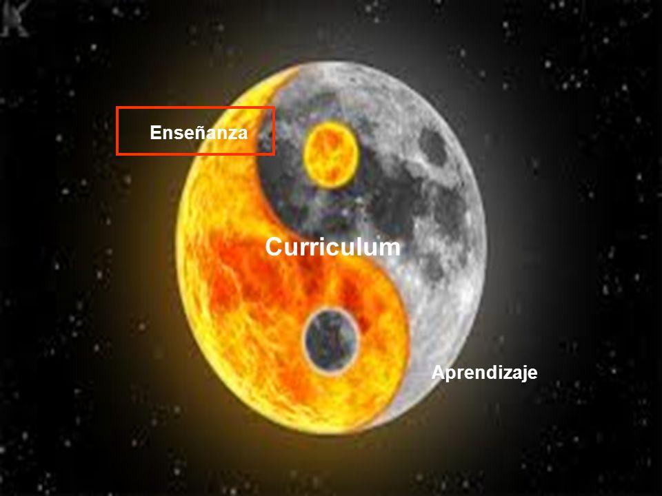 Enseñanza Aprendizaje Curriculum