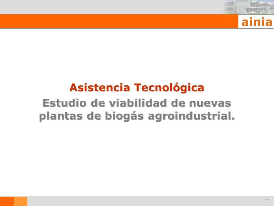 12 Asistencia Tecnológica Estudio de viabilidad de nuevas plantas de biogás agroindustrial.