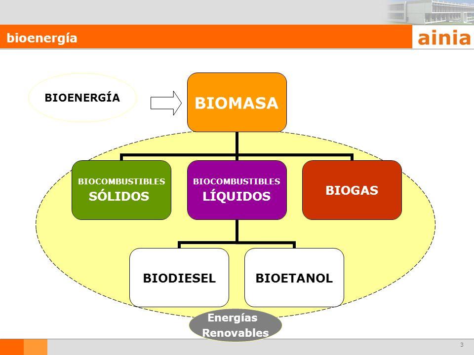 3 bioenergía BIOENERGÍA Energías Renovables