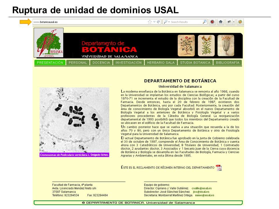 Ruptura de unidad de dominios USAL