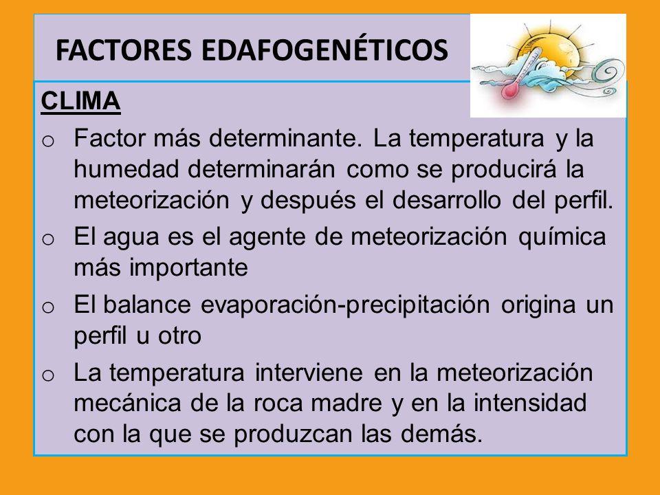 FACTORES EDAFOGENÉTICOS CLIMA o Factor más determinante. La temperatura y la humedad determinarán como se producirá la meteorización y después el desa