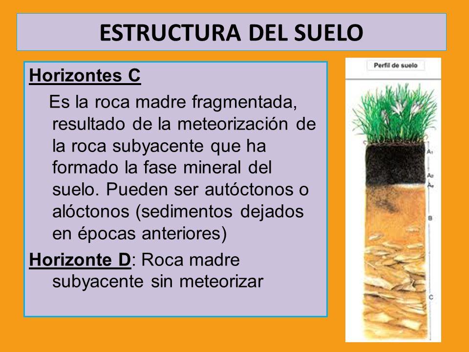 ESTRUCTURA DEL SUELO Horizontes C Es la roca madre fragmentada, resultado de la meteorización de la roca subyacente que ha formado la fase mineral del