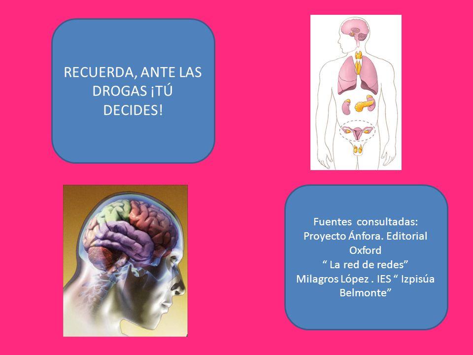 Fuentes consultadas: Proyecto Ánfora. Editorial Oxford La red de redes Milagros López. IES Izpisúa Belmonte RECUERDA, ANTE LAS DROGAS ¡TÚ DECIDES!