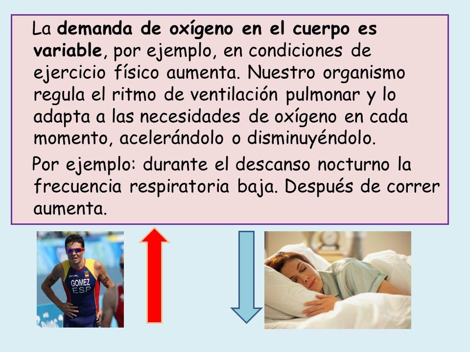 ENFERMEDADES DEL APARATO RESPIRATORIO INFECCIOSAS Catarro nasal Faringitis Amigdalitis(anginas) Laringitis (afonía) Sinusitis Bronquitis/ Bronquiolitis o neumonía Gripe SARS Legionella Asma NO INFECCIOSAS Algunas afonías Sinusitis no infecciosas Rinitis alérgica Asma Bronquitis crónica Enfisema pulmonar Pleuresía Cáncer de pulmón y garganta Pleuresía