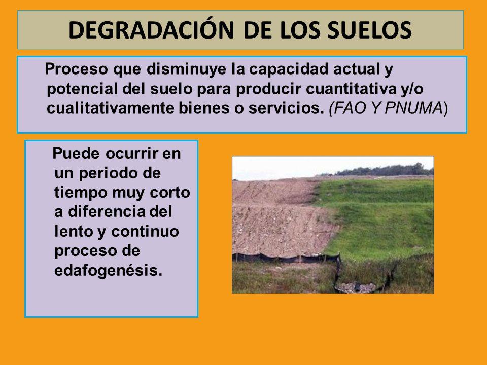 DEGRADACIÓN DE LOS SUELOS Proceso que disminuye la capacidad actual y potencial del suelo para producir cuantitativa y/o cualitativamente bienes o ser