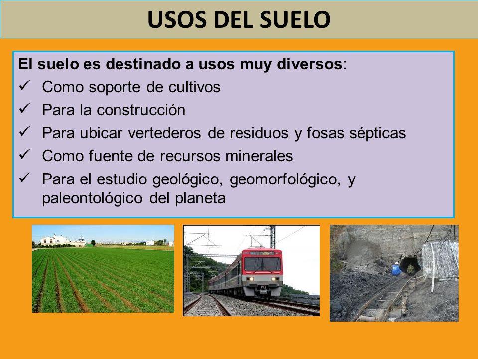 USOS DEL SUELO El suelo es destinado a usos muy diversos: Como soporte de cultivos Para la construcción Para ubicar vertederos de residuos y fosas sép