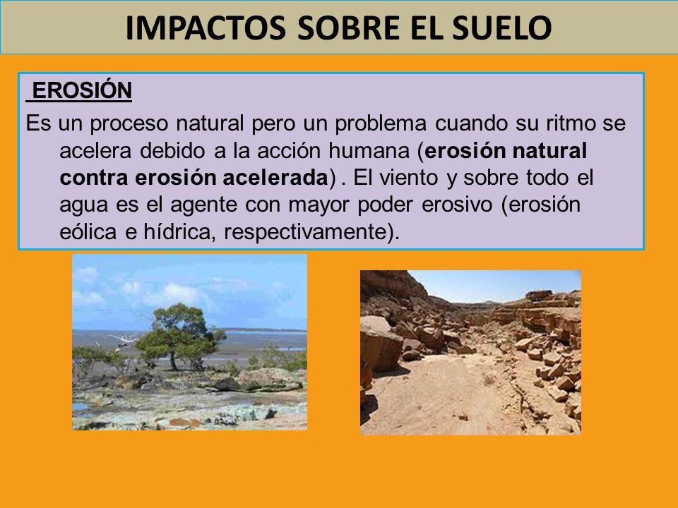 IMPACTOS SOBRE EL SUELO EROSIÓN Los efectos de la erosión son: o Pérdida de suelo fértil (contribuye a la desertización) o Deterioro de ecosistemas marinos litorales, fluviales y de ribera, por acumulación de sedimentos.