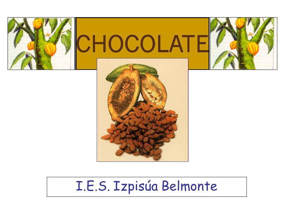 El chocolate Infórmate El chocolate es uno de los productos del sur que más consumimos en el norte.