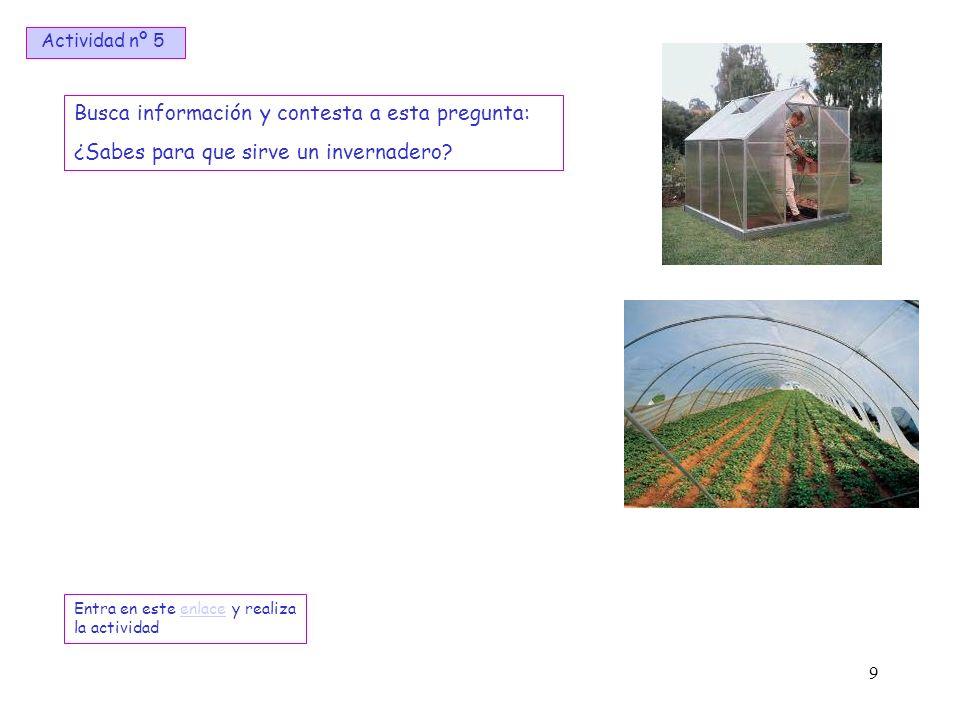 9 Busca información y contesta a esta pregunta: ¿Sabes para que sirve un invernadero? Entra en este enlace y realiza la actividadenlace Actividad nº 5