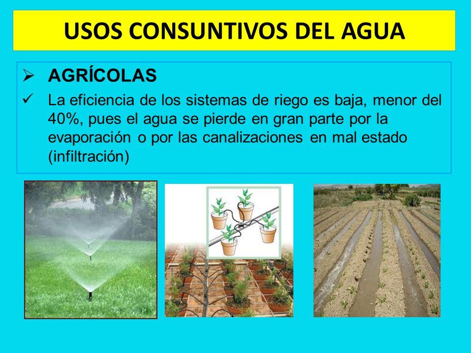 USOS CONSUNTIVOS DEL AGUA AGRÍCOLAS La eficiencia de los sistemas de riego es baja, menor del 40%, pues el agua se pierde en gran parte por la evapora