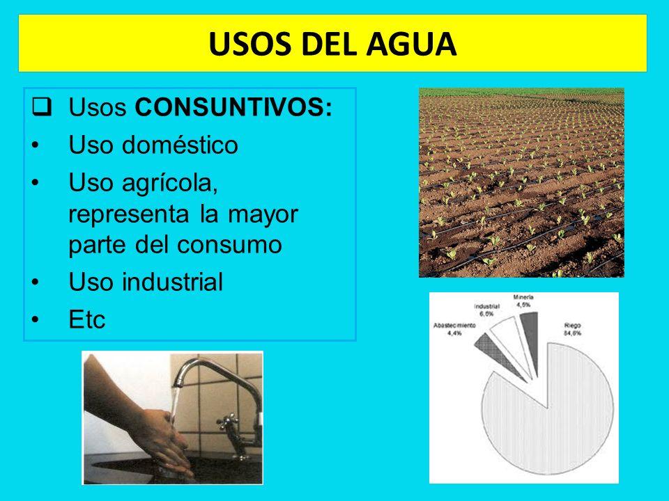 USOS DEL AGUA Usos CONSUNTIVOS: Uso doméstico Uso agrícola, representa la mayor parte del consumo Uso industrial Etc