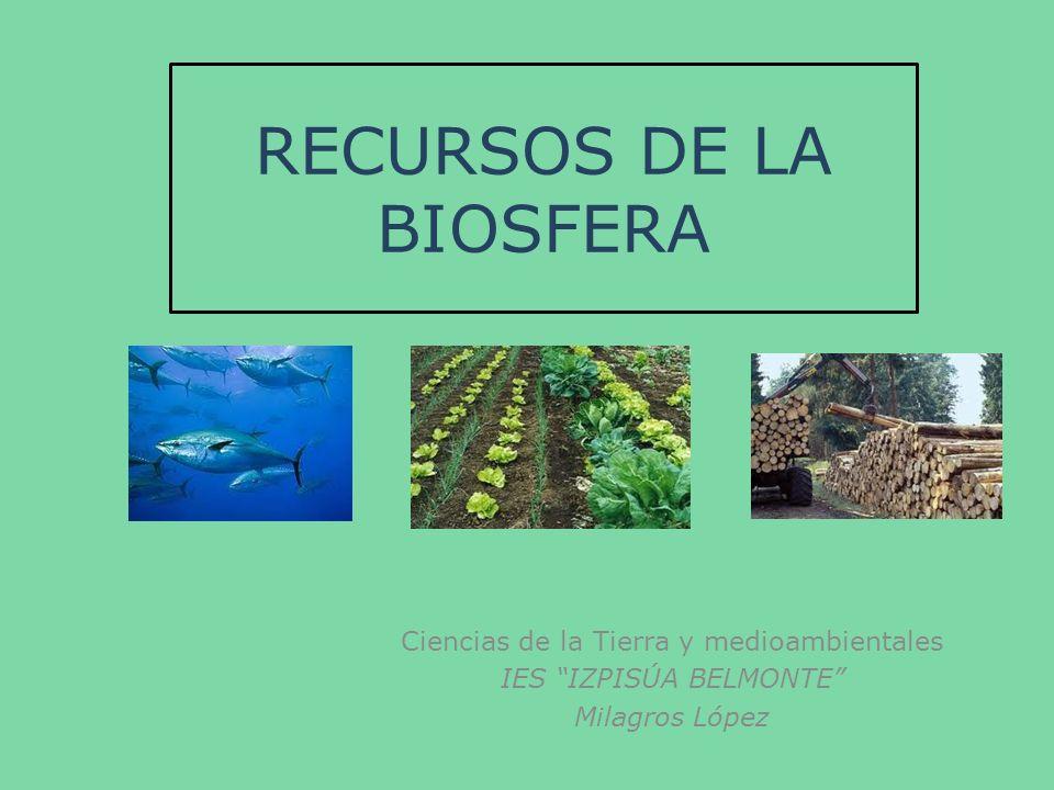 RECURSOS DE LA BIOSFERA Ciencias de la Tierra y medioambientales IES IZPISÚA BELMONTE Milagros López