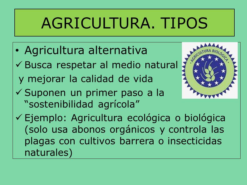 AGRICULTURA. TIPOS Agricultura alternativa Busca respetar al medio natural y mejorar la calidad de vida Suponen un primer paso a la sostenibilidad agr