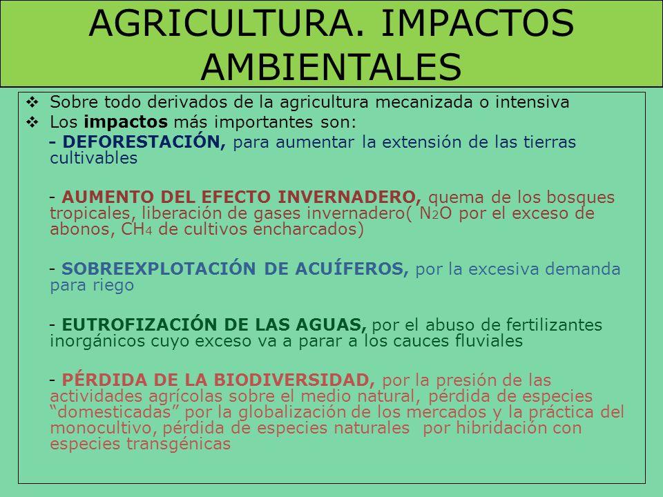 AGRICULTURA. IMPACTOS AMBIENTALES Sobre todo derivados de la agricultura mecanizada o intensiva Los impactos más importantes son: - DEFORESTACIÓN, par