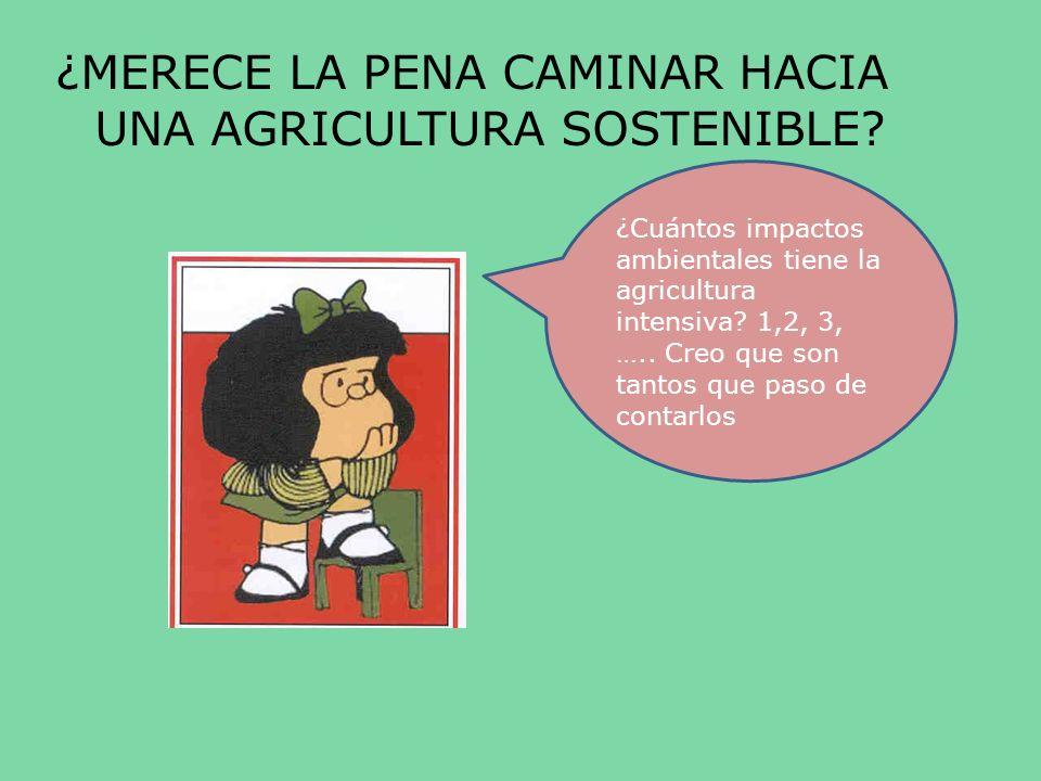 ¿MERECE LA PENA CAMINAR HACIA UNA AGRICULTURA SOSTENIBLE? ¿Cuántos impactos ambientales tiene la agricultura intensiva? 1,2, 3, ….. Creo que son tanto
