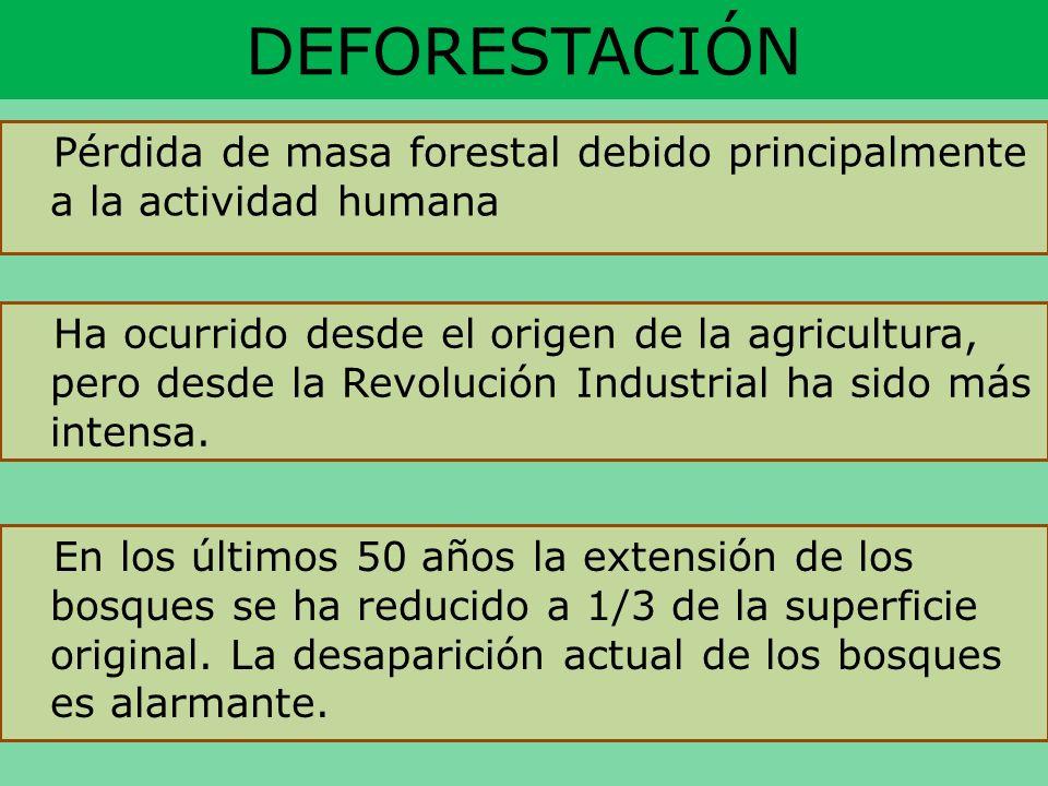 DEFORESTACIÓN Pérdida de masa forestal debido principalmente a la actividad humana Ha ocurrido desde el origen de la agricultura, pero desde la Revolu
