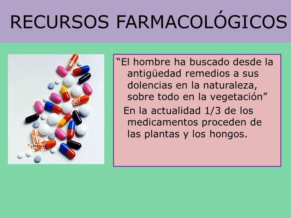 RECURSOS FARMACOLÓGICOS El hombre ha buscado desde la antigüedad remedios a sus dolencias en la naturaleza, sobre todo en la vegetación En la actualid