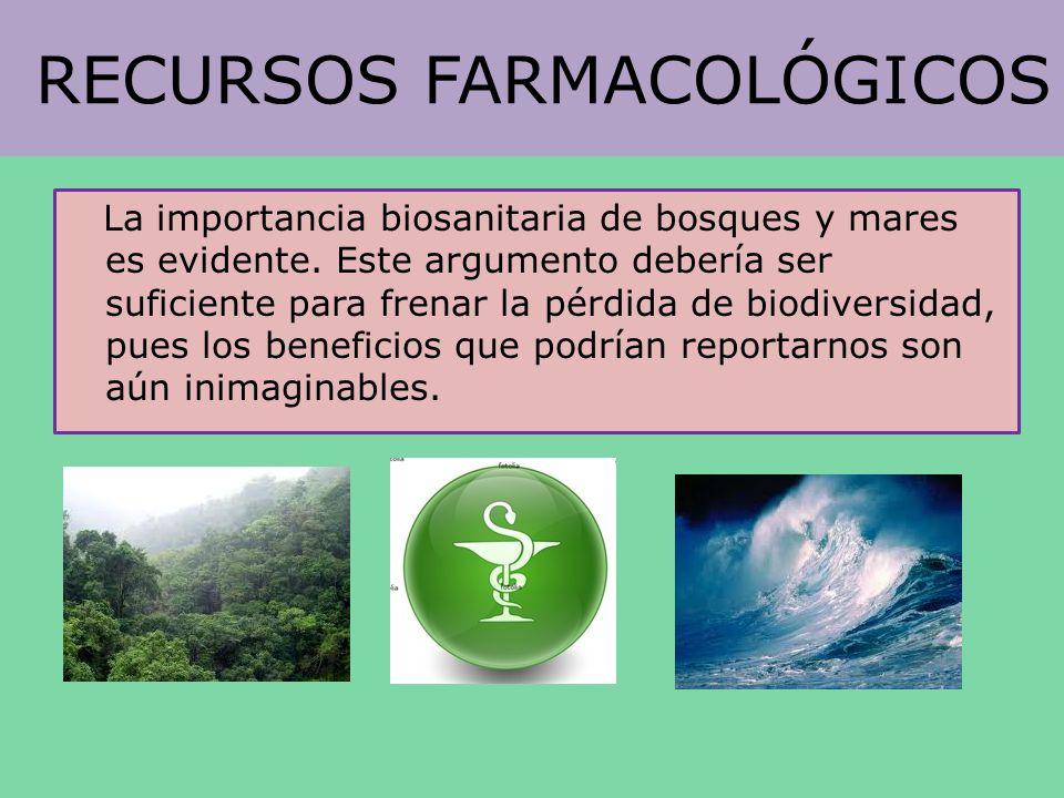 RECURSOS FARMACOLÓGICOS La importancia biosanitaria de bosques y mares es evidente. Este argumento debería ser suficiente para frenar la pérdida de bi