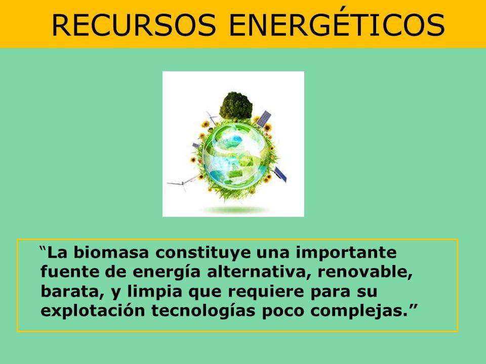 RECURSOS ENERGÉTICOS La biomasa constituye una importante fuente de energía alternativa, renovable, barata, y limpia que requiere para su explotación