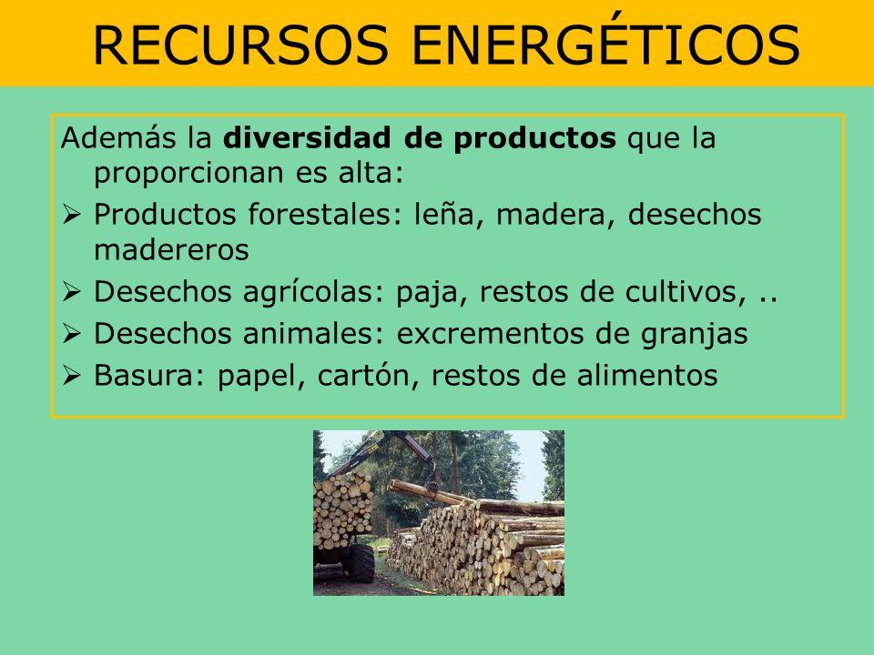 RECURSOS ENERGÉTICOS Además la diversidad de productos que la proporcionan es alta: Productos forestales: leña, madera, desechos madereros Desechos ag