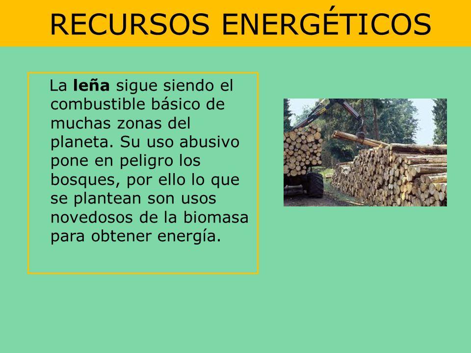 RECURSOS ENERGÉTICOS La leña sigue siendo el combustible básico de muchas zonas del planeta. Su uso abusivo pone en peligro los bosques, por ello lo q