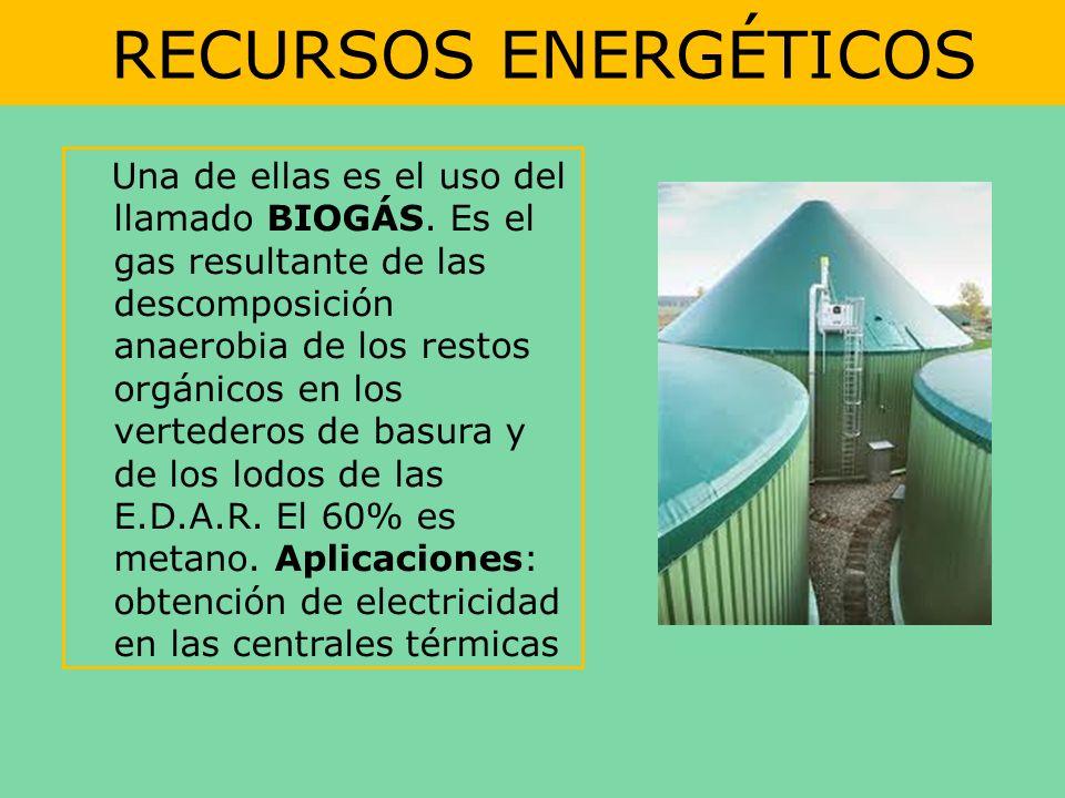 RECURSOS ENERGÉTICOS Una de ellas es el uso del llamado BIOGÁS. Es el gas resultante de las descomposición anaerobia de los restos orgánicos en los ve