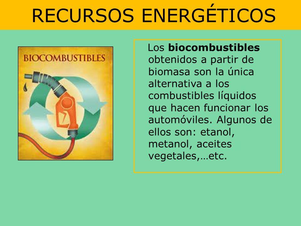 RECURSOS ENERGÉTICOS Los biocombustibles obtenidos a partir de biomasa son la única alternativa a los combustibles líquidos que hacen funcionar los au