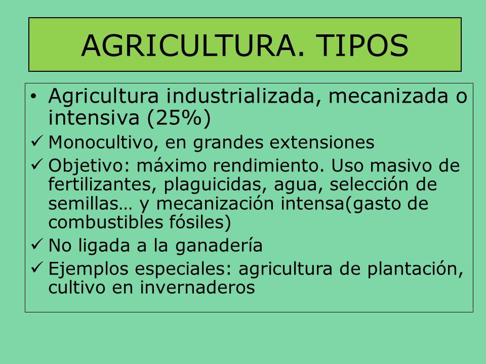 AGRICULTURA. TIPOS Agricultura industrializada, mecanizada o intensiva (25%) Monocultivo, en grandes extensiones Objetivo: máximo rendimiento. Uso mas