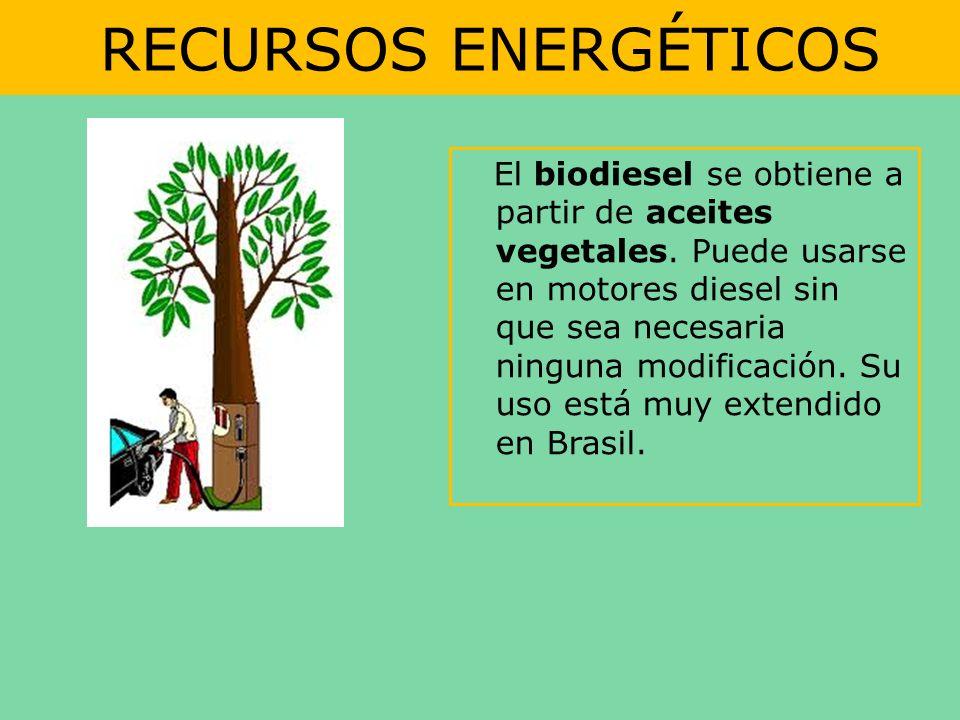 RECURSOS ENERGÉTICOS El biodiesel se obtiene a partir de aceites vegetales. Puede usarse en motores diesel sin que sea necesaria ninguna modificación.