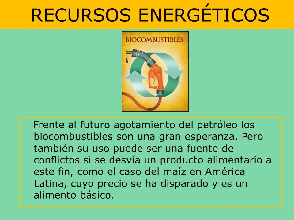 RECURSOS ENERGÉTICOS Frente al futuro agotamiento del petróleo los biocombustibles son una gran esperanza. Pero también su uso puede ser una fuente de