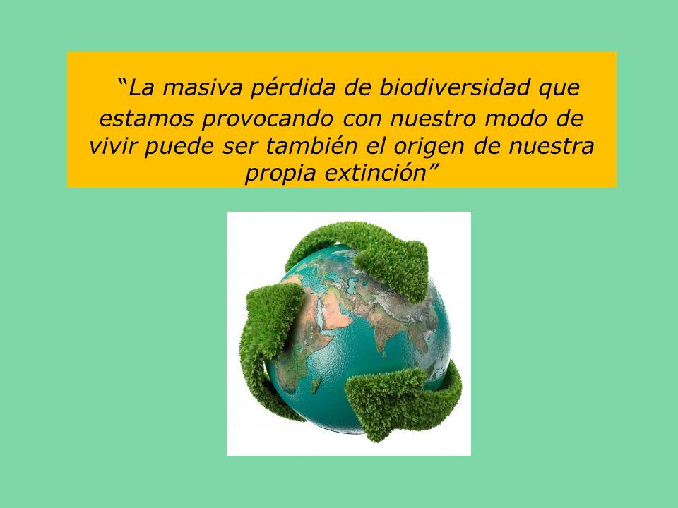 La masiva pérdida de biodiversidad que estamos provocando con nuestro modo de vivir puede ser también el origen de nuestra propia extinción